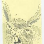 rabbit finally